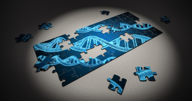 puzzle-2500333_960_720